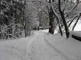 ora vi dico perché amo l'inverno
